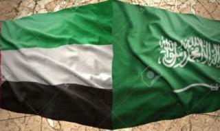"""خبيران يصفان المساعدات الإماراتية السعودية للسودان بعملية """"إنقاذ واحتضان"""""""