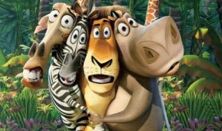 لو شاهدت فيلم مدغشقر وحلمت بزيارتها .. فقد حانت الفرصة