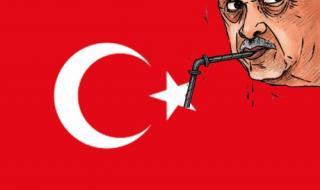 الحكومة التركية تسخدم الاخوان كورقة لمهاجمة المعارضة (كاريكاتير)