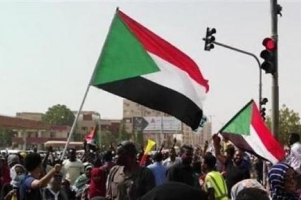 مصر تسعى لتحقيق توافق بين قوى الحرية والجبهة الثورية في السودان