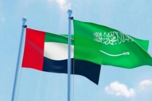 متانة العلاقة بين السعودية والإمارات تفشل محاولات الوقيعة القطرية