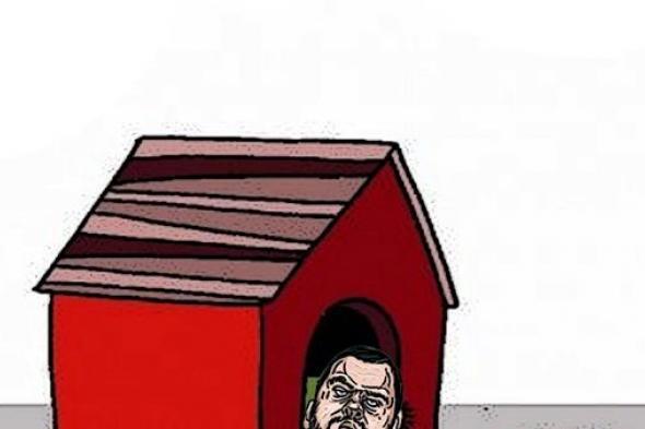 بدون تعليق (كاريكاتير)