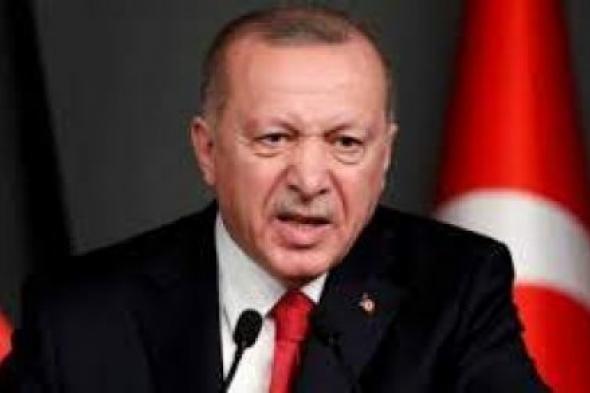 تركيا تحاول استغلال فراغ السلطة في مالي كما فعلت بليبيا